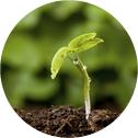 Scavi e bonifica ambientale